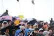 The dedicated Canadian crowd watches track activity in the rain during Race 2 of the Honda Indy Toronto -- Photo by: Shawn Gritzmacher